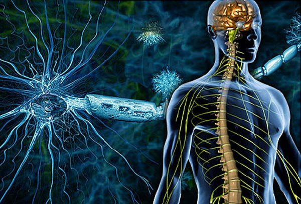 Multiple-Sclerosis-treatments-n